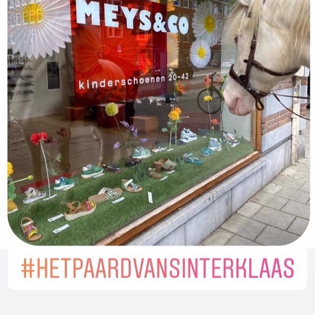 Wij hadden bezoek!!!! Vandaag open van 12-17 uur met dank aan @vanstal.nl